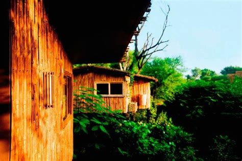 Treehouse Cottages Near Jaipur by The Tree House Resort Jaipur Rajasthan Hotel Reviews