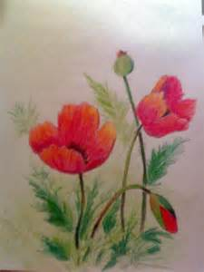 remembrance day poppy flowers by trickstar hoshi on deviantart