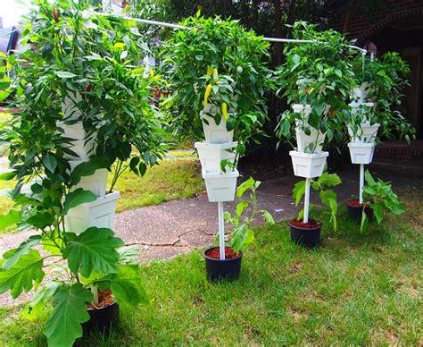 hydroponic garden system guide step  step farm