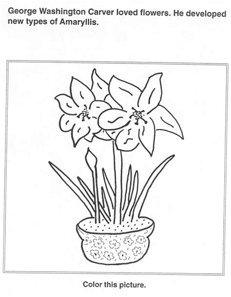 George Washington Carver Coloring And Activity Book George Washington Carver Coloring Page