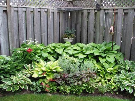 backyard corner ideas corner hosta garden found on gardentenders com shade