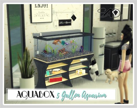 conversion  aquabox  gallon aquarium  daern sims