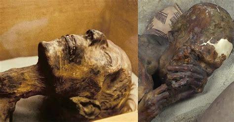 imagenes momias egipcias investigaci 243 n demuestra que faraones y otros antiguos