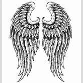Hand drawn angel wings vector art - Download Hand vectors - 743248