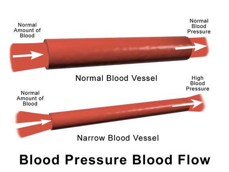 blood pressure can certain foods lower my blood pressure health for