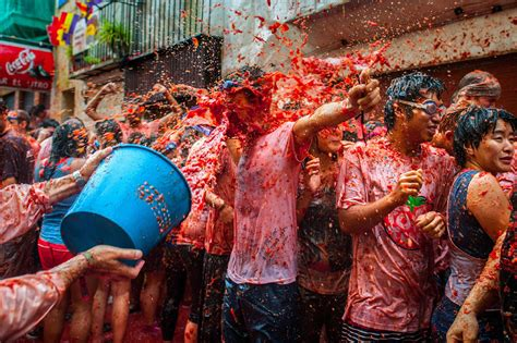 You Say Tomato I Say Fooood Fight by Most Stupid Festival On Earth Pics