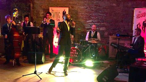 the swing cats the swing cats tankardstown the swing cats