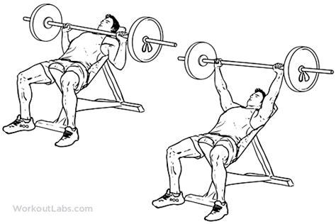 barbell bench press exercise incline barbell bench press illustrated exercise guide workoutlabs