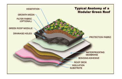 living roof solar system introduction to green roofs ehs journal green