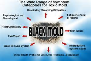 home remedies for black mold adrenalfatiguerelief anxiety and adrenal