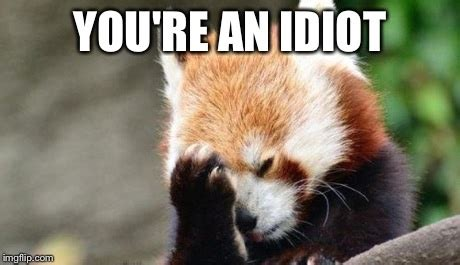 Red Panda Meme - accident on the red panda railroad redpanda gifs