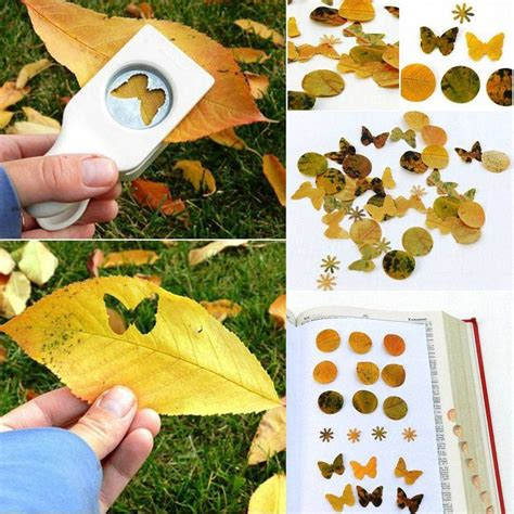 Paper Craft Kits For Adults - 50 best images about craft ideas for adults on