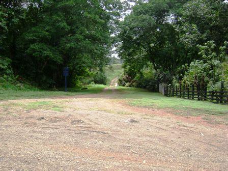 häuser zu verkaufen scout24 zu verkaufen 202 ha urwald farm an der karibischen seite