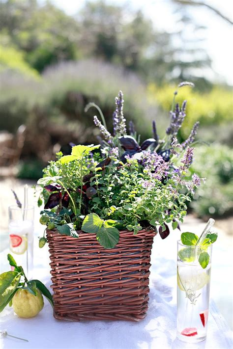 table top herb garden diy kitchen herb garden giveaway yummy mummy kitchen