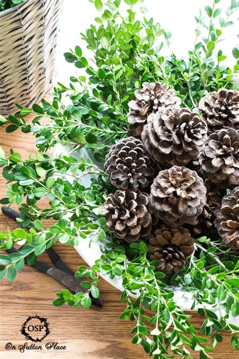 pine cone centerpieces boxwood and pine cone centerpiece on sutton place