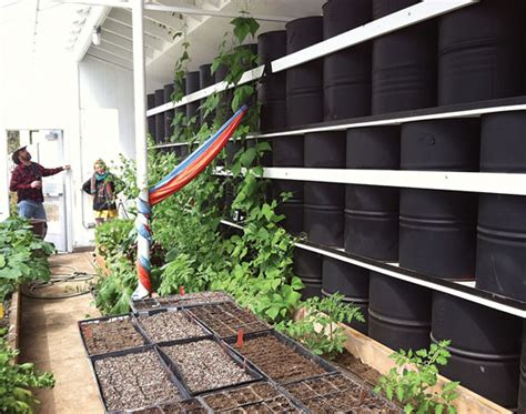 the green house colorado springs small greenhouse plans for winter growing diy mother earth news