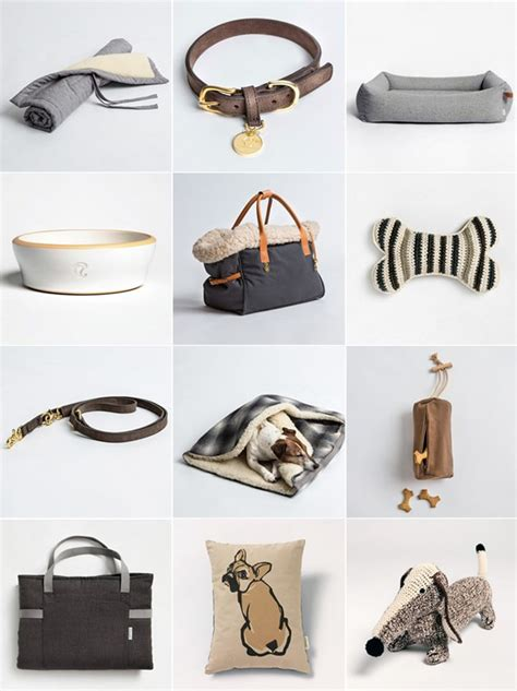 accessories pet pets