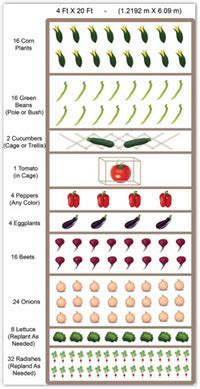 How To Layout A Garden Vegetable Gardening Plans Designs Worksheets Planting Guide Zone Chart