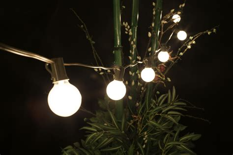 bulk string lights bulk outdoor lights 28 images buy garden trading