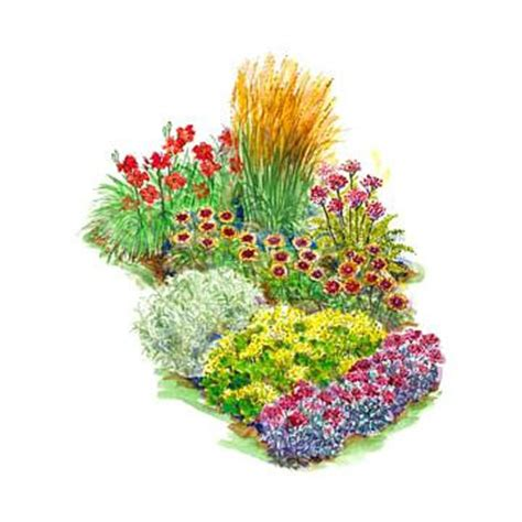 Bright Garden Flowers Bright Flowers Flowers Garden And Bold On