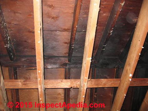 fireplace odor removal building smoke odor removal find remove