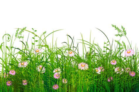 Rasen Richtig Säen 5123 by Zu Einem Sch 246 Nen Garten Geh 246 Rt Ein Sch 246 Ner Rasen