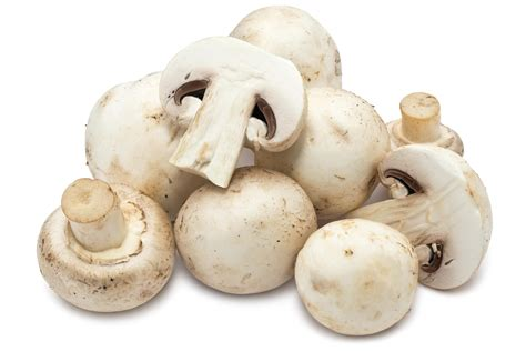 Pictures Of Mushrooms To Eat
