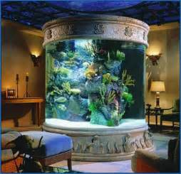 Saltwater Fish Tank Ideas   Fish : Pet Animals Photos #7G1Y8jmL8o#4968