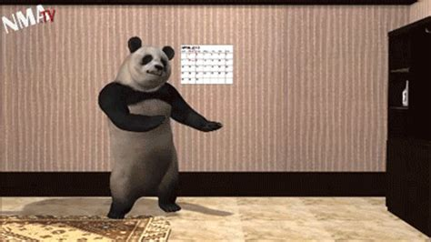 Sex Panda Meme - dancing gif find share on giphy