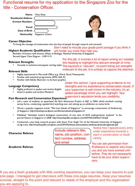 Cv Template Singapore Sle Resumes S Guide