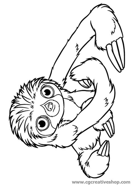 stone fox coloring page stone fox coloring pages coloring pages