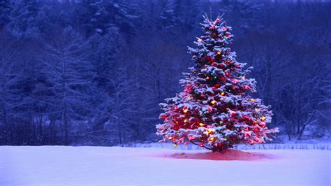 wallpaper christmas hd 1080p free download hd wallpapers images pictures desktop