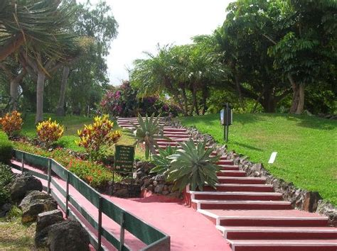 imagenes de jardines frontales pequeños jardines 187 piedras para jardin