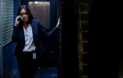 who the fbi women on the blacklist wallpaper the series ladder actress the fbi tv show