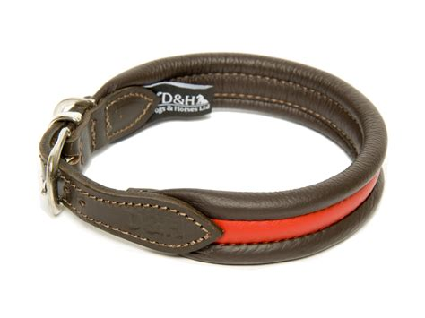 collar for dogs collars for staffies best staffy collars
