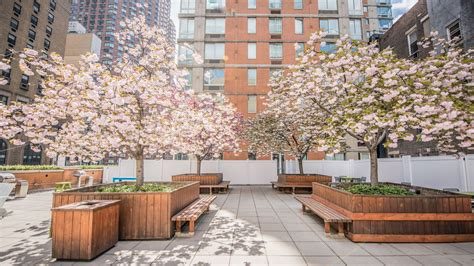 longacre house longacre house apartments in midtown 305 west 50th street equityapartments com