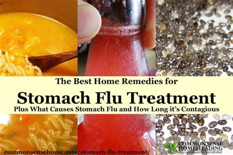 the best home remedies for stomach flu treatment