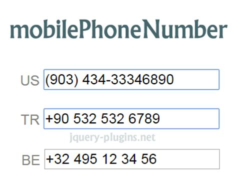 phone number format us form elements category jquery plugins page 3