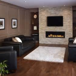 Houzz Fireplace Ideas Home Renovation 2015 2015 Home Design Ideas