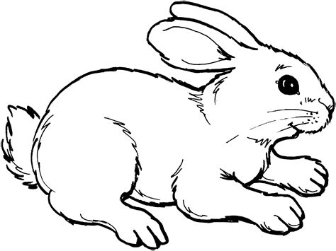 winter rabbit coloring page winter animals coloring pages free rabbit coloring pages