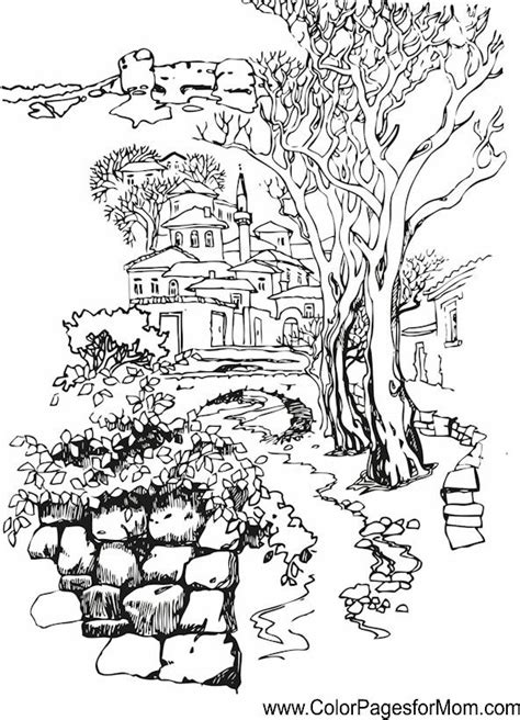 Detailed Landscape Coloring Pages For 511 Best Images About Tree Coloring Pages On