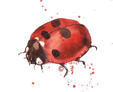 watercolor tattoos ladybug ladybug watercolor print and black spotted ladybug