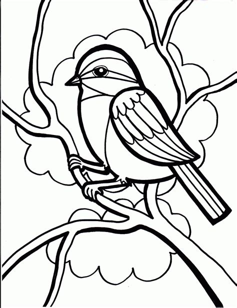 birds to color guaranteed printable pictures of birds to colo 17037