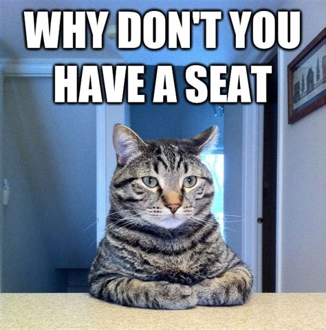 Cat Sitting At Table Meme - chris hansen cat know your meme
