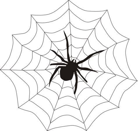 clipart web spider and web clip at clker vector clip