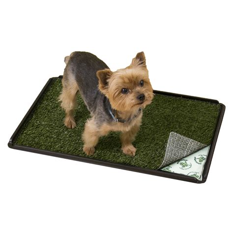 petco puppy poochpads indoor turf potty plus petco