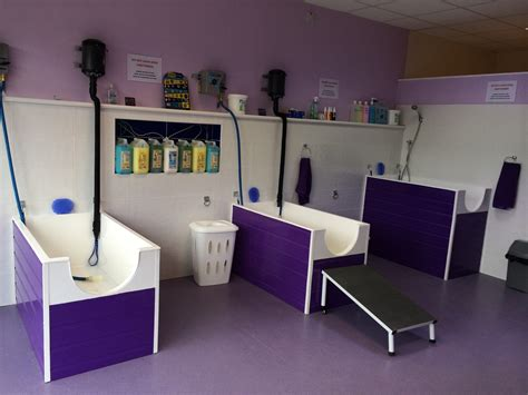 pet house dog salon self serve dog wash at trendy pooches moreton