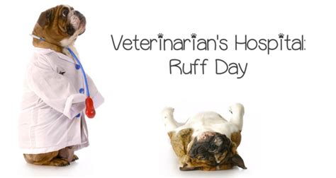 come out play 187 veterinarians hospital ruff day