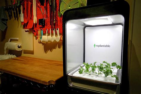 indoor farm boxes promise  work  lots  fresh