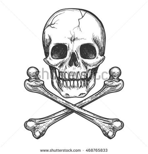 skull tattoo stock images royalty free images amp vectors